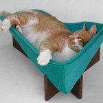 寝そべるにも、腰掛けるにも良し。モダンでレトロな猫ベッド