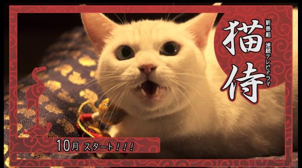 130920nekozamurai 03 600x334 - 北村一輝×猫のドラマと映画『猫侍』。ドラマは10月スタート、映画は来春公開