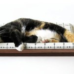 モダンな猫ベッドシリーズ:Curve Pet Bed