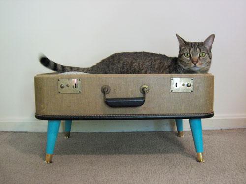 131014catbeddiy - モダンな猫ベッドシリーズ:スーツケースで猫ベッドをDIY
