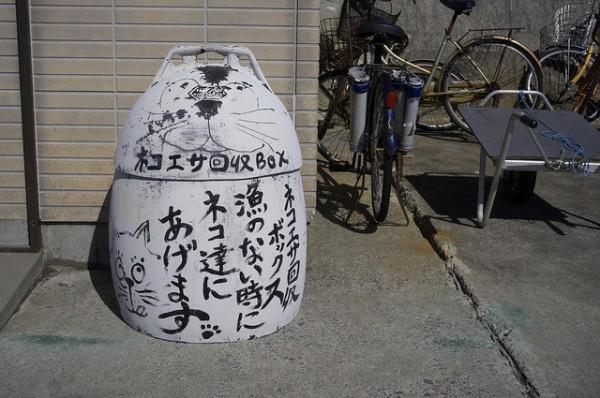 131102cat02 600x398 - 日本の「猫島」探訪:石巻市・田代島