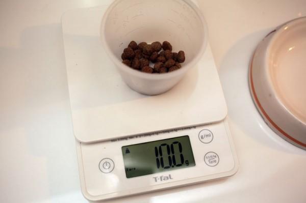 140101diet 600x399 - 猫ダイエットのコツは「計量」にアリ