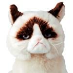不機嫌顔の猫「GrumpyCat」のぬいぐるみが、PLAZAで先行販売