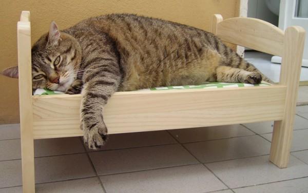 140213IKEAcat01 600x376 - IKEAのドールベッドは、猫ベッドに最適