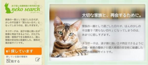140227nekosearch 600x266 - 迷子の猫と再会をサポートするサイト「ネコサーチ」