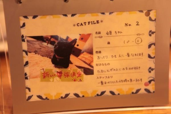 140301necoRepublicIMG 1431 600x399 - 岐阜の猫カフェで始まる、ビジネスと猫保護活動の素敵な関係