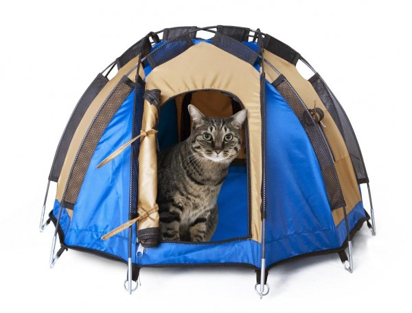 140422dodecahedrontent 600x457 - ひょっこり猫が顔を出す、猫用のテント「Dodecahedron Tent」
