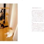 猫と建築の幸せな関係を語る、フォトエッセーが発売に