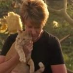 竜巻を生き延びた茶猫、瓦礫の中からひょっこり飼い主の前に現れる
