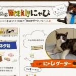 NHKが猫放送協会になりつつある件について