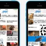 猫ニュースだけを閲覧できる眼福アプリが登場、ただしiOSのみ