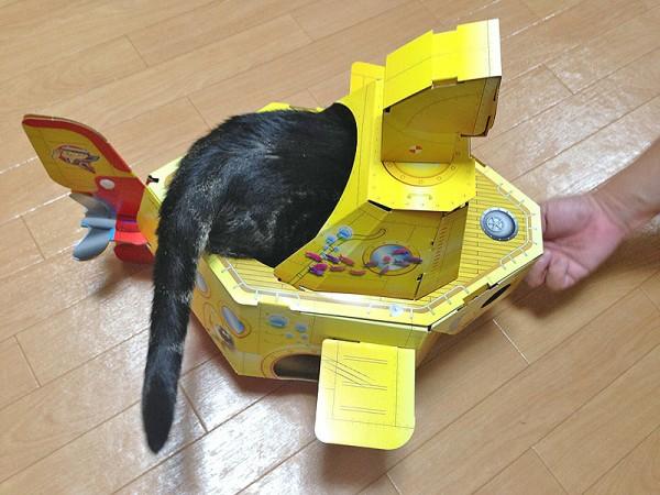 140812catsubmarine04 600x450 - 猫用潜水艦に潜む猫、涼しげな表情を浮かべる