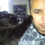 画面から振り向いてもらいたい黒猫、ソフトな実力行使を発動
