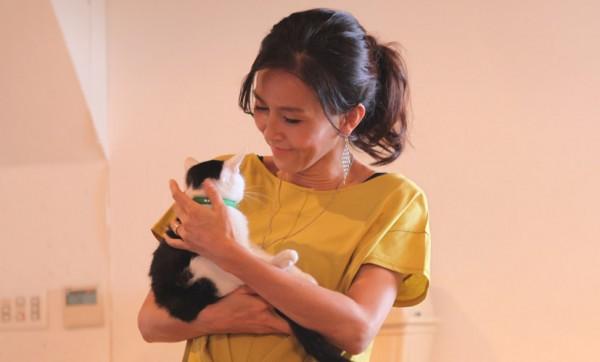 140907nekoichinekoza04 600x362 - 「ネコ市ネコ座」トークショー、杉本彩さんが猫保護活動への理解を呼びかける