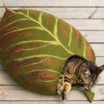 ほのかに秋色な葉っぱ風ベッドに眠る猫、中でも上でも快適な寝顔