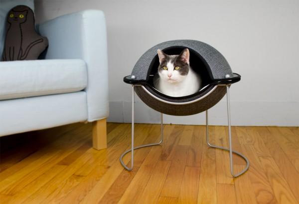 131009heppodherrfar2 600x411 - 真面目な顔の猫、モダンなドーム型猫ベッドにぽっかり浮かぶ
