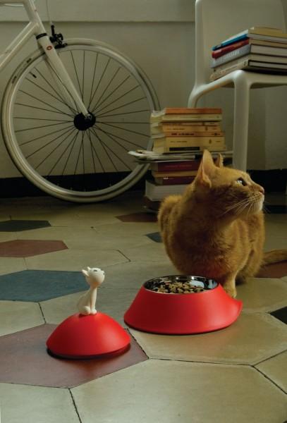 141222mio02 407x600 - 真っ赤なお皿で食事する猫、舌を出してご満悦顔