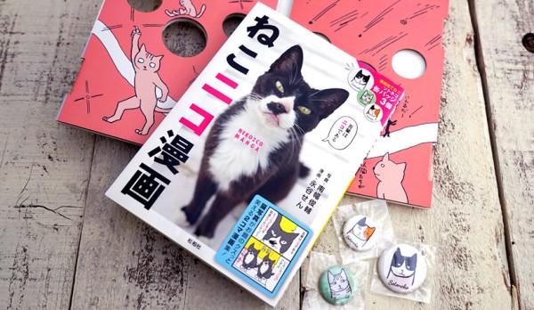 141225nekoniko01 600x348 - 表情豊かな島々の猫、ゆるーい漫画のモデルになる