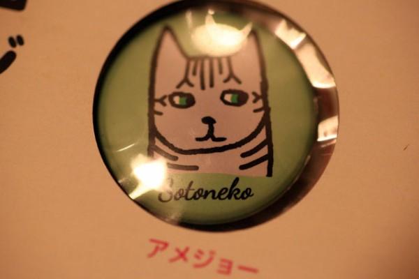 141225nekoniko04 600x400 - 表情豊かな島々の猫、ゆるーい漫画のモデルになる
