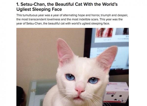 150107setsucat 600x433 - BuzzFeed恒例「2014年猫ネタBest30」、Best1にギャップ寝顔のセツちゃんが選ばれる