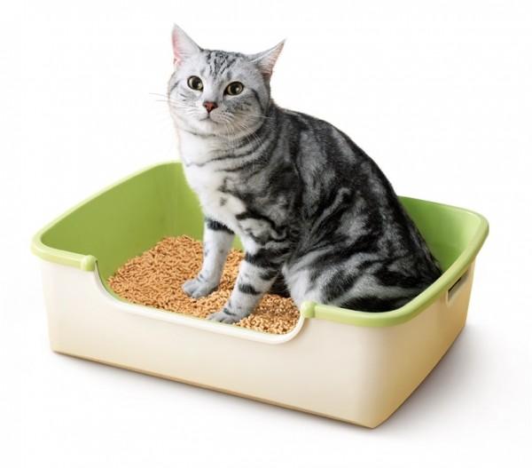 150323nyantomo01 600x527 - 開口部を大きくした新型猫トイレ、極小猫砂とともに登場