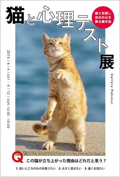 150401catphoto 407x600 - 猫の写真で心を読み解く、「猫と心理テスト展」が神楽坂で開催