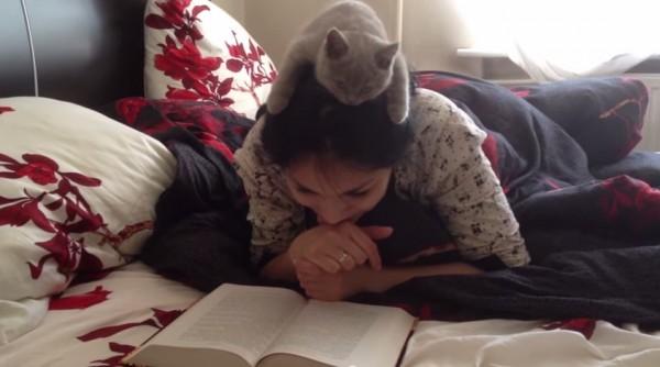 150530readingcat 600x334 - 共に読書に勤しむ子猫、頭の上から覗きこみ