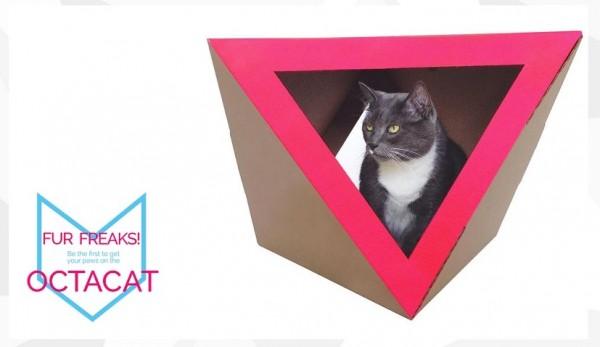 150610Catchitecture 600x347 - 近未来風猫ハウス、なぜか落ち着く不思議な形