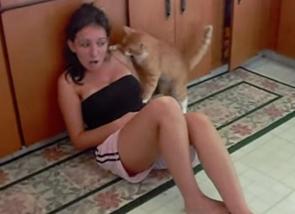 150620songcat 600x436 - 歌をやめろとなぜか噛みつく、茶猫と美女の仲良し動画