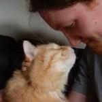 猫の名を呼べば聞こえる掠れ声、猫の鼻息微かに触れて