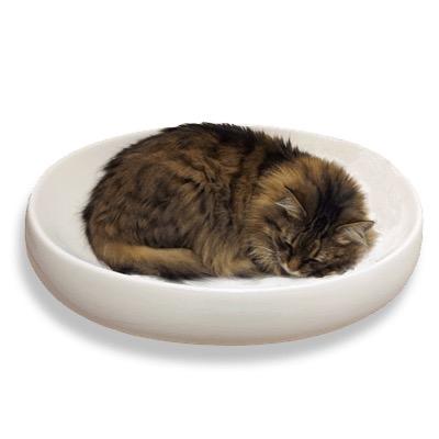 150726catBowl02 - 洗面台の占拠対策ソリューション、セラミック製の猫ベッド