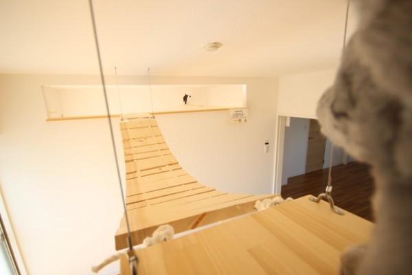 160328myuhouse03 600x400 - 猫が主役のマンション誕生、1棟丸ごと猫用フルリノベーション