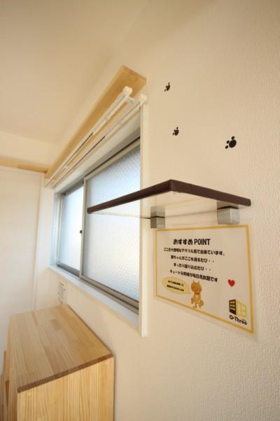 160328myuhouse04 400x600 - 猫が主役のマンション誕生、1棟丸ごと猫用フルリノベーション