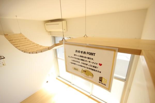 日当たりのいい窓際に、吊り橋を設置した部屋も。