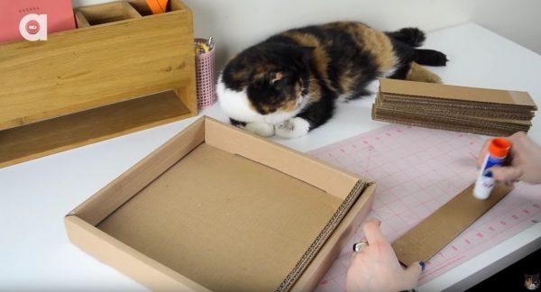 160606DIYCATSCRATCHER 600x324 - 材料はお菓子の箱と段ボール、猫の爪とぎDIY