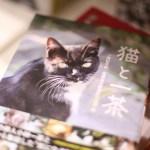週末の猫本探しに有明へ。東京国際ブックフェアが25日まで開催