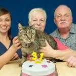 昭和生まれと思しき猫、推定31歳の誕生日を迎える