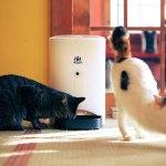 買うだけでも猫助けになるIoTの「ネコメシフィーダー」、CF支援を募集中