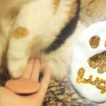 Xmas用猫の肉球オーナメント、制作協力はかなり難航