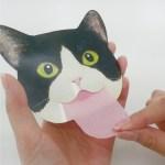 顔の脂をスッキリと、しまい忘れた猫舌型のあぶらとり紙