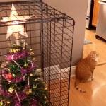 クリスマスツリーを猫から守る10の方法