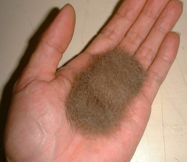 "170125MECATSHIMA02 600x519 - 愛猫の抜け毛で作る、""この世に1機""のヘッドホン"