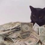 マネーの海に泳ぐ黒猫、潜って滑って肩まで浸かって
