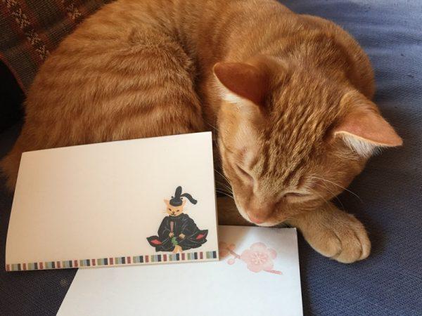 170207tobiumeta 600x450 - 4周年の記念はお懐紙、猫本専門書店で創業祭始まる