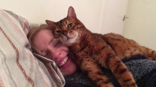 170522catpillow 600x338 - 猫による超特級の愛情表現、誰もがイチコロ「顔マクラ」