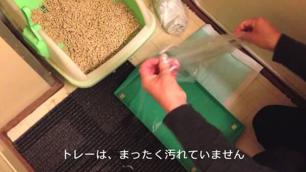 170604toilettechnic 600x338 - 猫トイレの掃除の手間を見事に減らす、袋を使った目からウロコ技