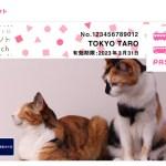 自分で撮った愛猫写真をPASMO化できる「東京メトロイベントTouch」会員証