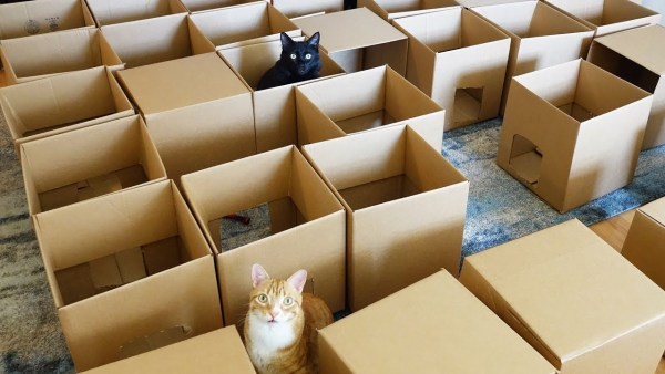 170811cats 600x338 - 50個の段ボールで作る猫の遊び場、跳んで跳ねての大興奮