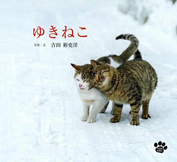 181006yukineko02 600x550 - 北の大地の「ゆきねこ」「かべねこ」写真展、どうしん本社で23日から開催