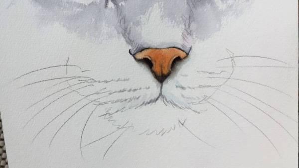 181211cat 600x338 - リアルな水彩猫の鼻、プロの手さばきパラパラ写真で